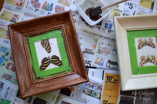 Butterfly Specimen Frame Makeover Step 1