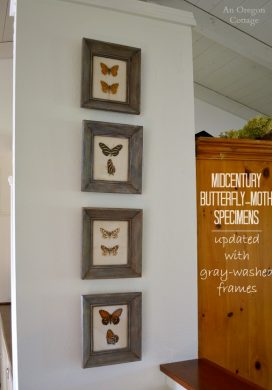 DIY Gray-Washed Frames for Midcentury Butterfly Specimens