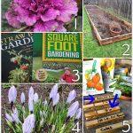 Tuesday Garden Party Features 2.17.15