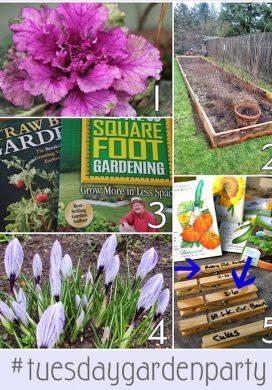 Tuesday Garden Party 2.17.15