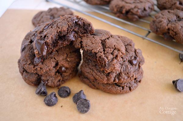 Fudgy Grain Free Chocolate Truffle Cookies