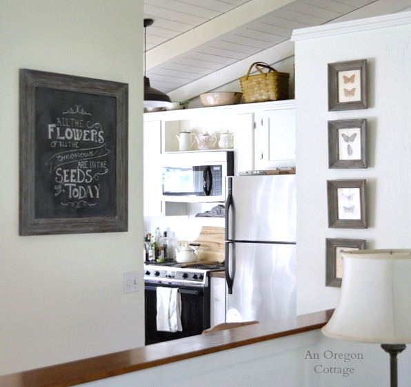 Gray Weathered Framed Chalkboard and Butterfly Specimens