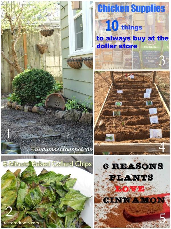 Tuesday Garden Party Features 3-24-15