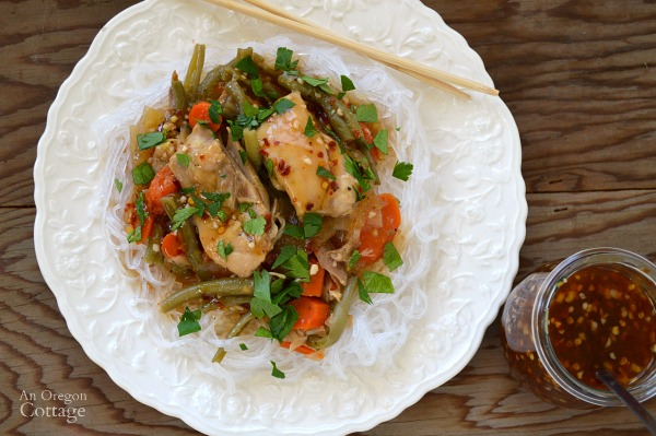 Easy & Delicious Sweet Chili Chicken and Vegetables made in a slow cooker and using garden frozen beans.