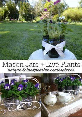 Easy Mason Jar Flower Arrangements with Live Plants