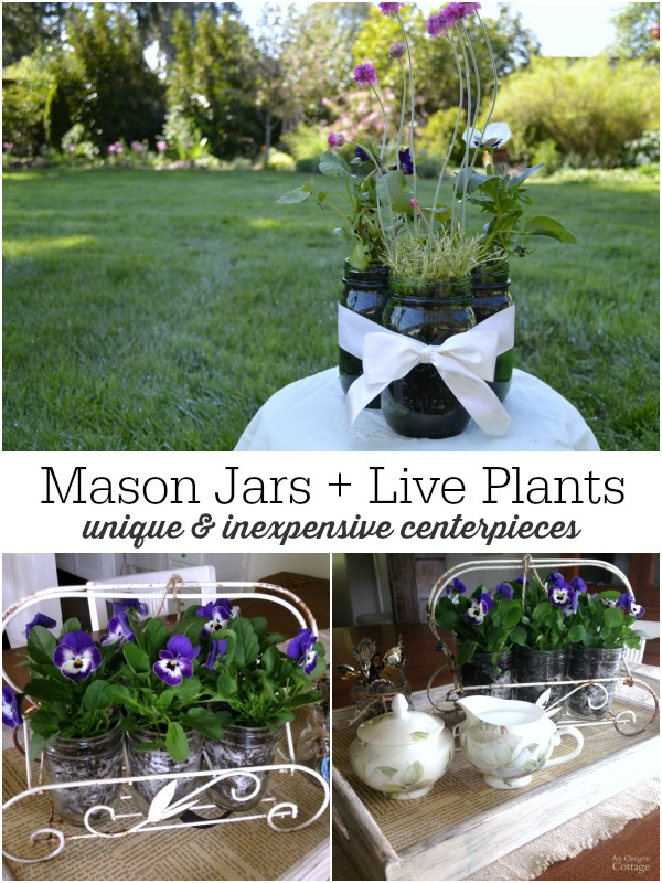 Mason jars and inexpensive live plants make great centerpieces that last weeks