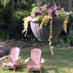 Hanging flower basket and Adirondack chairs in May