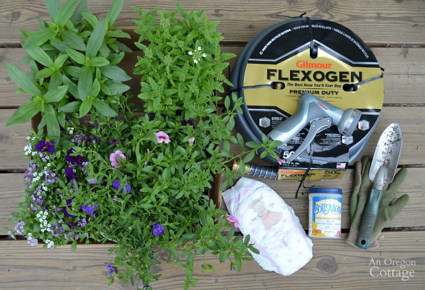 Tips for Planting Organic Flower Pots-Supplies