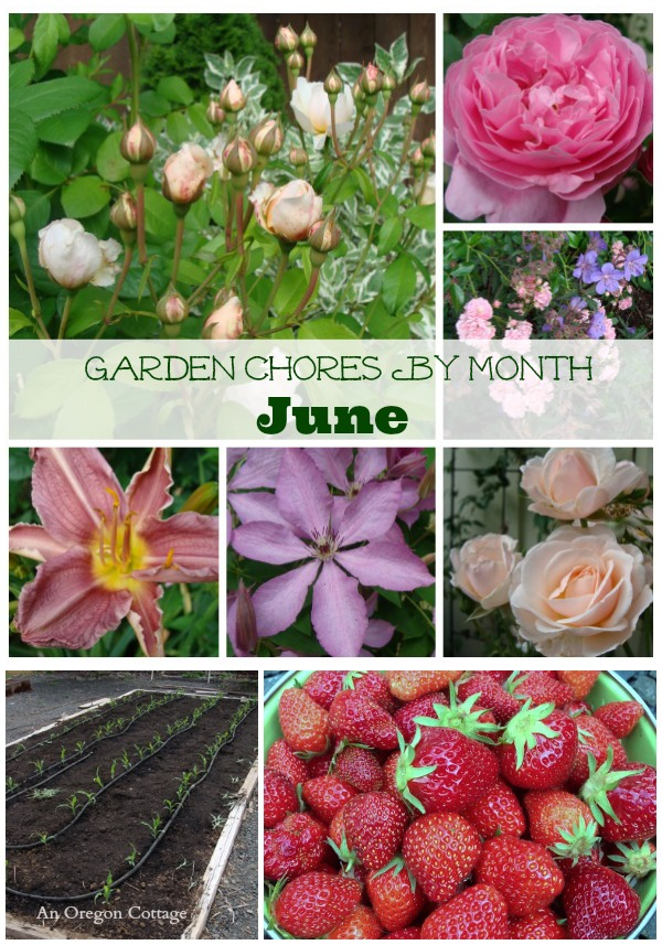 June Garden Chores collage