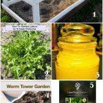 Tuesday Garden Party Features_6-1-15: Tips, Inspiration & Garden Ideas!