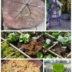 Tuesday Garden Party 6.30 #TGP featured images