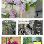 Tuesday Garden Party featured posts 6.9.15
