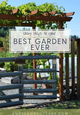 easy steps to best garden ever-garden gate