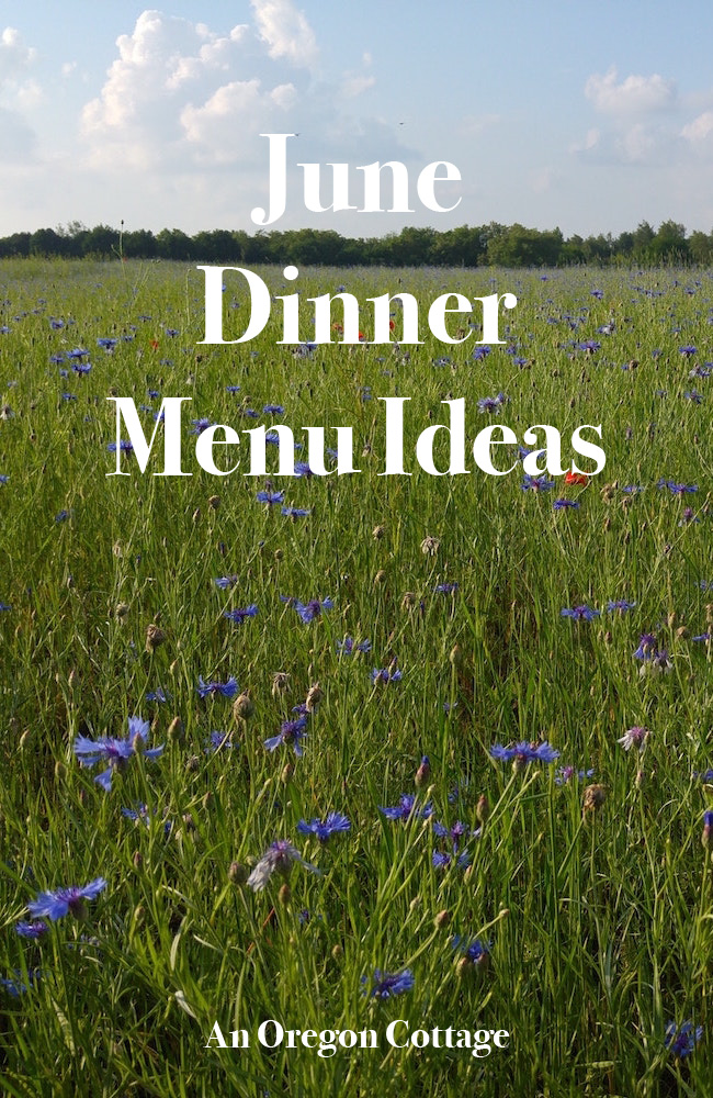 Dinner menu ideas for the month of June with seasonal produce and side dish options - easy and from scratch.