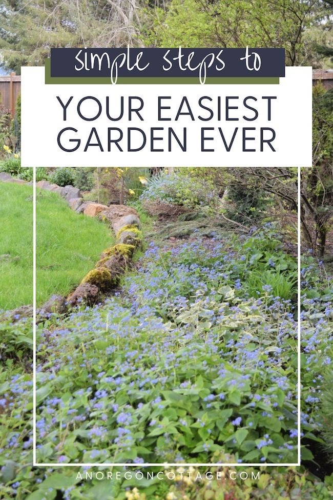 simple steps to easy gardening-border