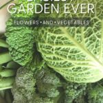steps to easy flower and vegetable gardening