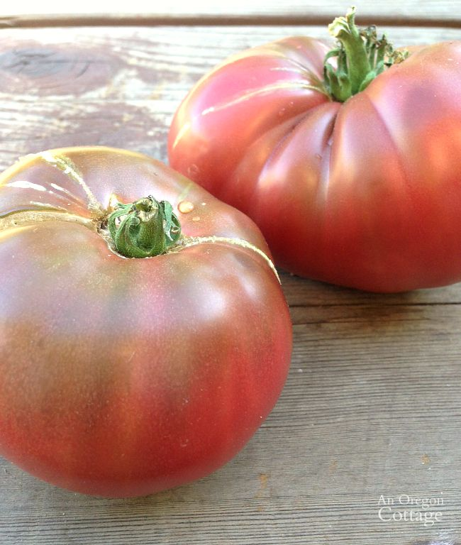 Cherokee Purple Tomatoes in July