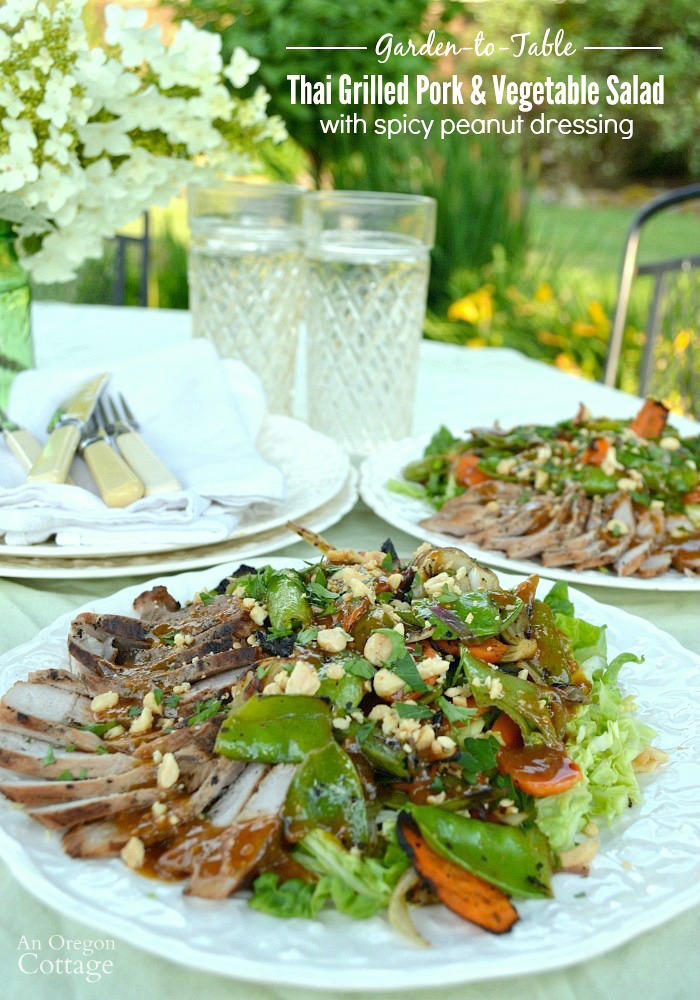 Easy and Flavorful Thai Grilled Pork and Vegetable Salad with Spicy Peanut Dressing