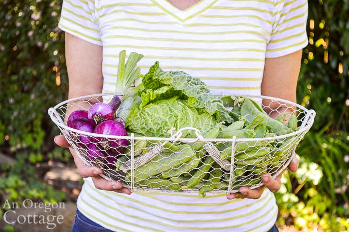 Harvest for Thai Grilled Salad in basket