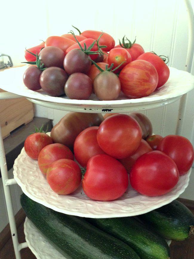July 2015 Tomato Harvest