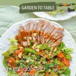 Thai grilled pork-vegetable salad-delicious dressing