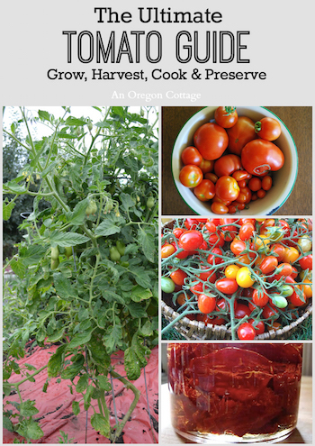 Everything you need to know about tomatoes + lots of recipes!