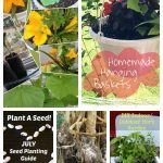 Tuesday Garden Party Featured Posts 7.21.15