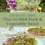 garden-to-table-Thai-grilled-pork-vegetable-salad