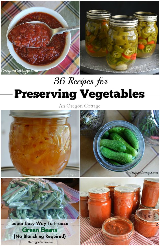 36 recipes for preserving vegetables an oregon cottage 36 recipes for preserving vegetables freezing drying and canning forumfinder