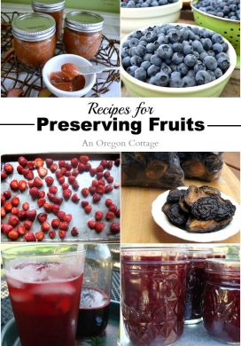 23 Recipes for Preserving Fruits