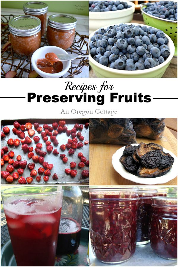 Recipes for Preserving Fruits- Freezing, Drying, and Canning
