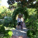 Santa Monica Beautiful Garden via An Oregon Cottage