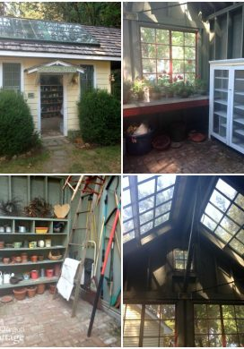 Three Things 8.29.15: Sweet Garden Shed, Poor Hanging Basket & A Workhorse Immersion Blender