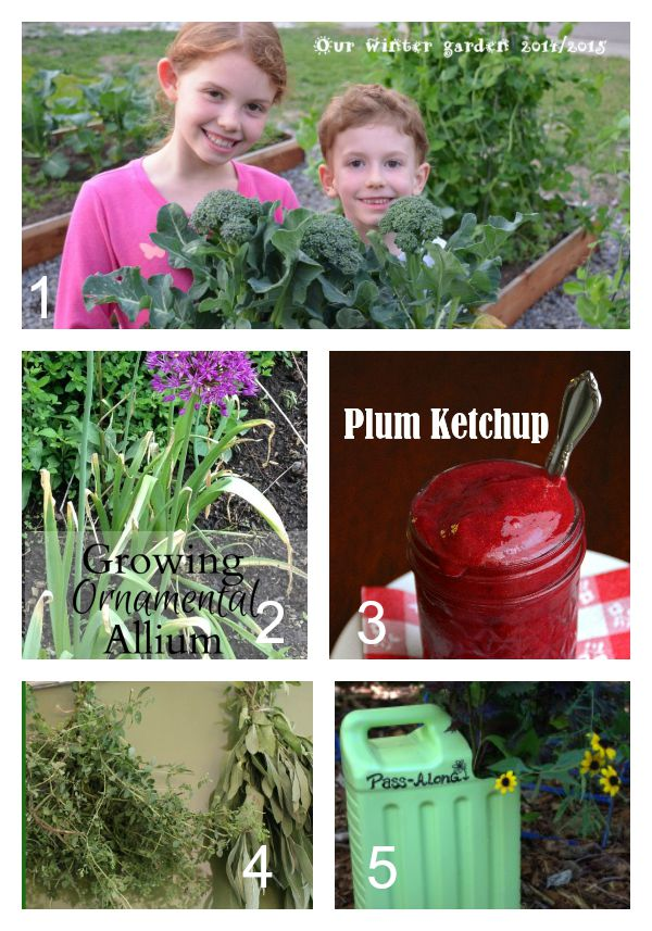 Tuesday Garden Party Featured Posts 9.1