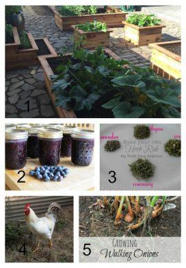 Tuesday Garden Party 8.11.15