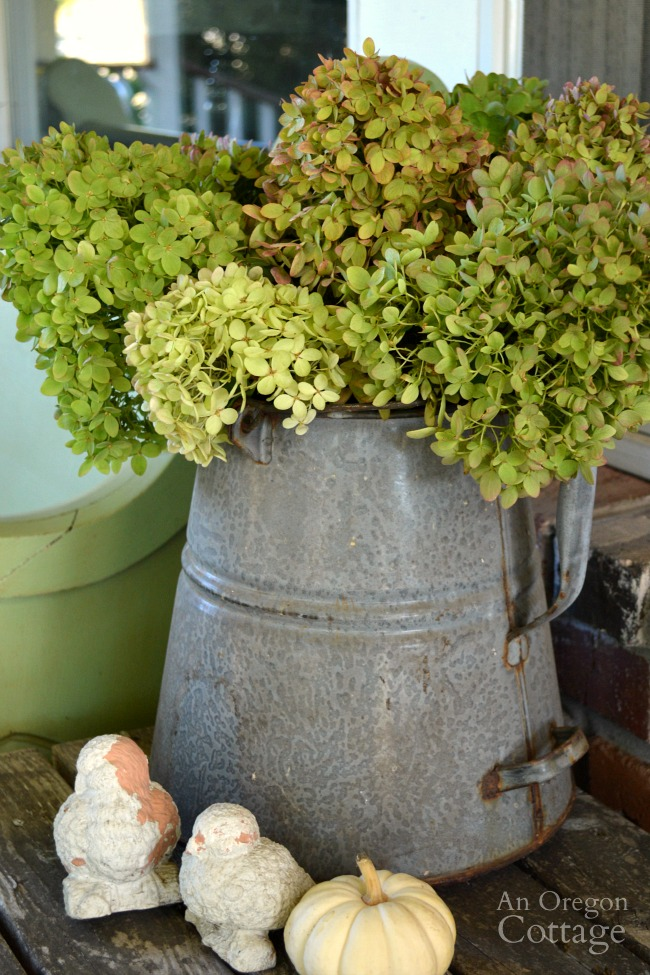Easy Fall Porch Decor 2015-galvanized pitcher and hydrangeas