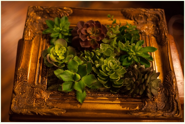 DIY Faux succulent frames via Run to Radience
