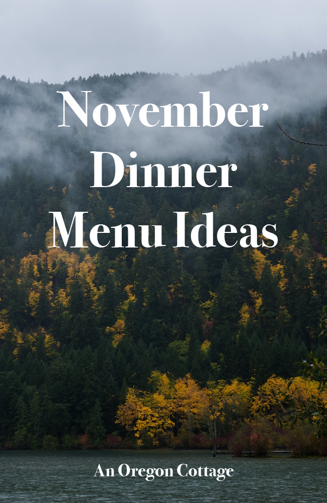 Easy, from scratch - but still quick and do-able - November dinner menu ideas using tried and true family favorite recipes.