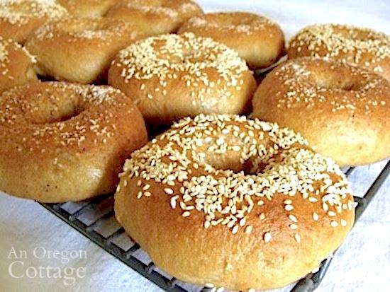 sourdough bagels on cooling rack