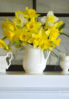 Simple White Pitcher Spring mantel-daffodils