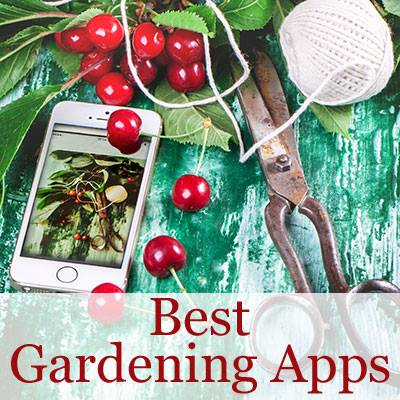 Best gardening apps via House of Hawthorne
