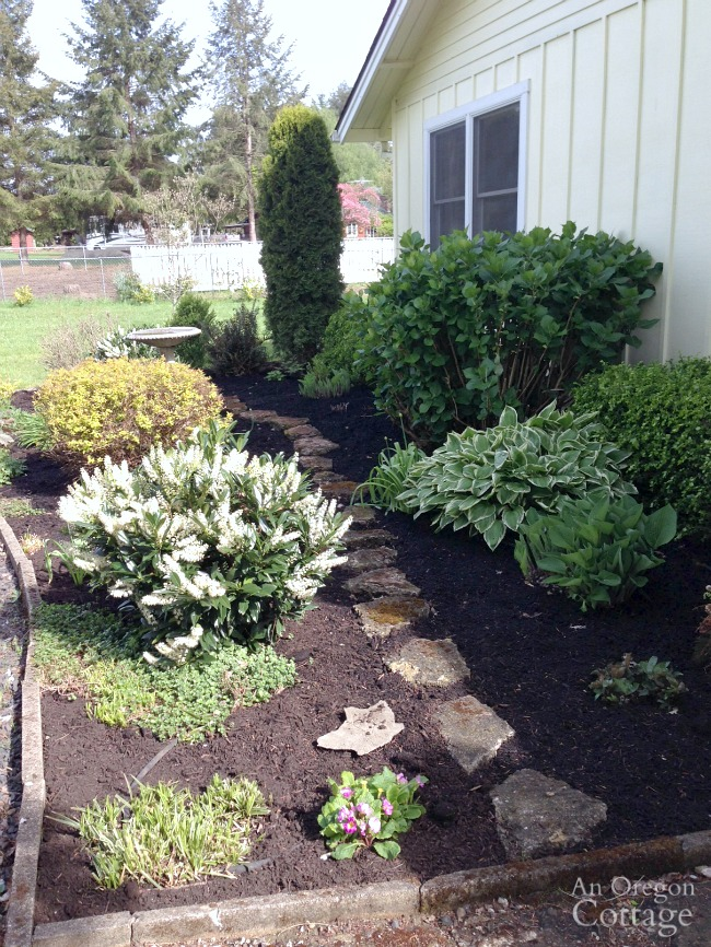 Freshly papered and mulched front garden