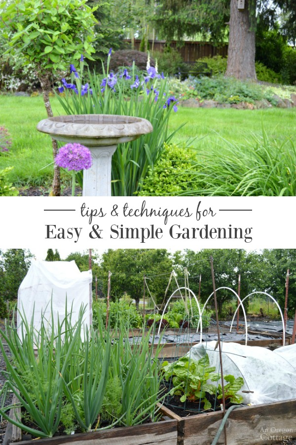 Tips and techniques for your easiest garden ever