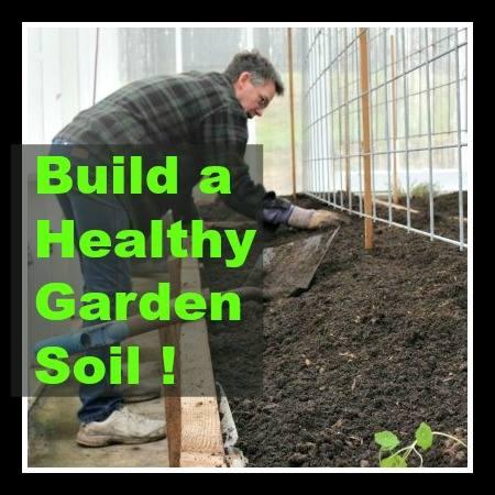 Healthy Garden Soil @ Homemade Food Junkie