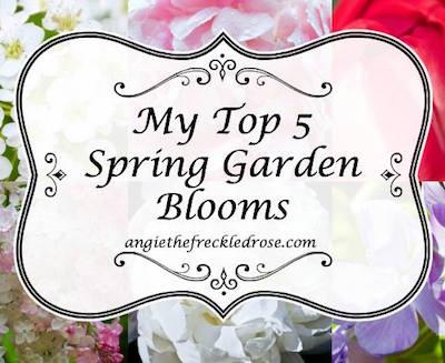 Five Spring Garden Blooms via The Freckled Rose