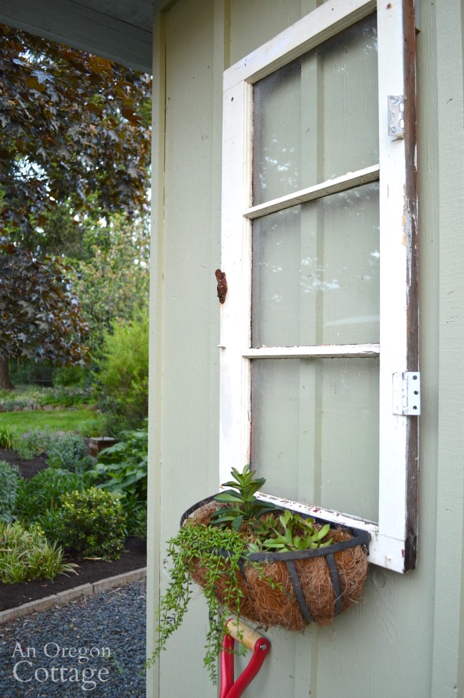 Quick Garden Shed Makeover-vintage window and sedum basket