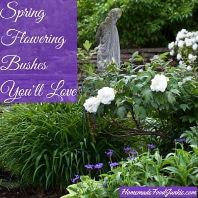 Spring Flowering Bushes via Homemade Food Junkie