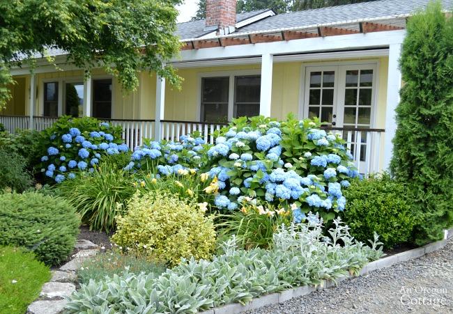 Garden Tour-Pergola porch garden