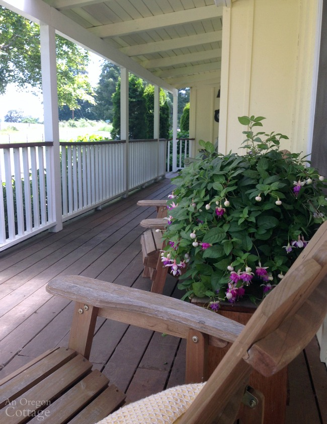 Cottage porch with Adirondack chairs and container of Fuchsias.