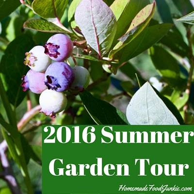 Summer garden tour via Homemade Food Junkie